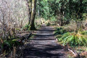Killarney Lake Trail