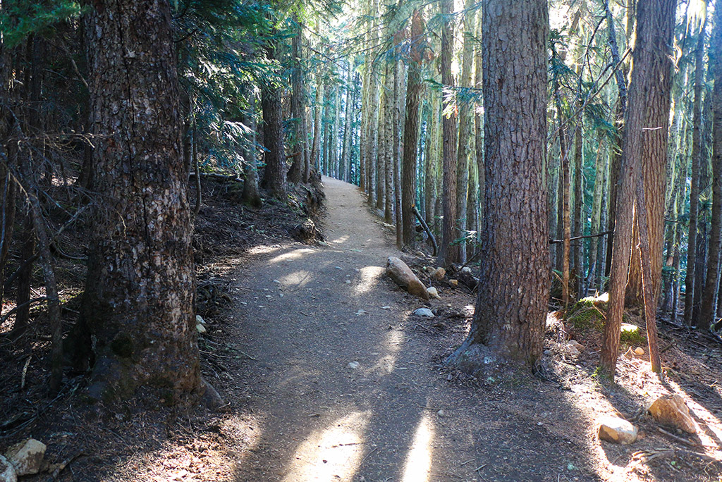 Garibaldi Lake Trail Image